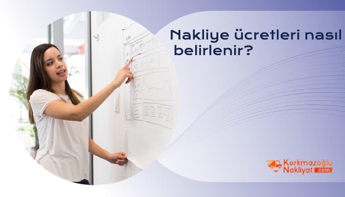 Anadolu Yakası Nakliyat Şirketleri